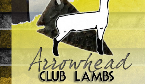 Arrowhead Club Lambs - Enter Lamb Site
